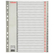 Register PP A4 maxi 1-31 grå